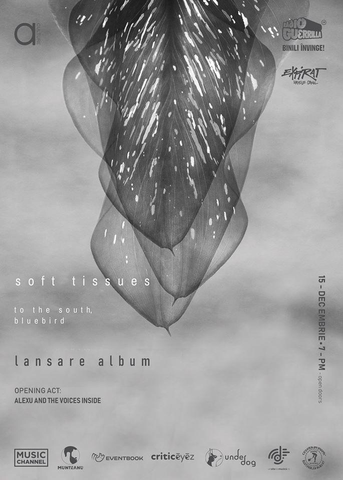 To the South, Bluebird - Concert Expirat - Contemporary-Establishment