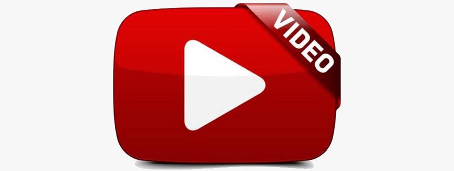 Videoclipuri Live - Contemporary-Establishment