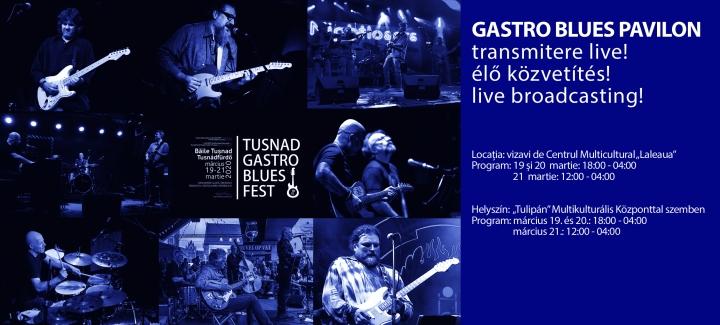Gastro Blues Pavilion la Tușnad Gastro Blues Festival 2020