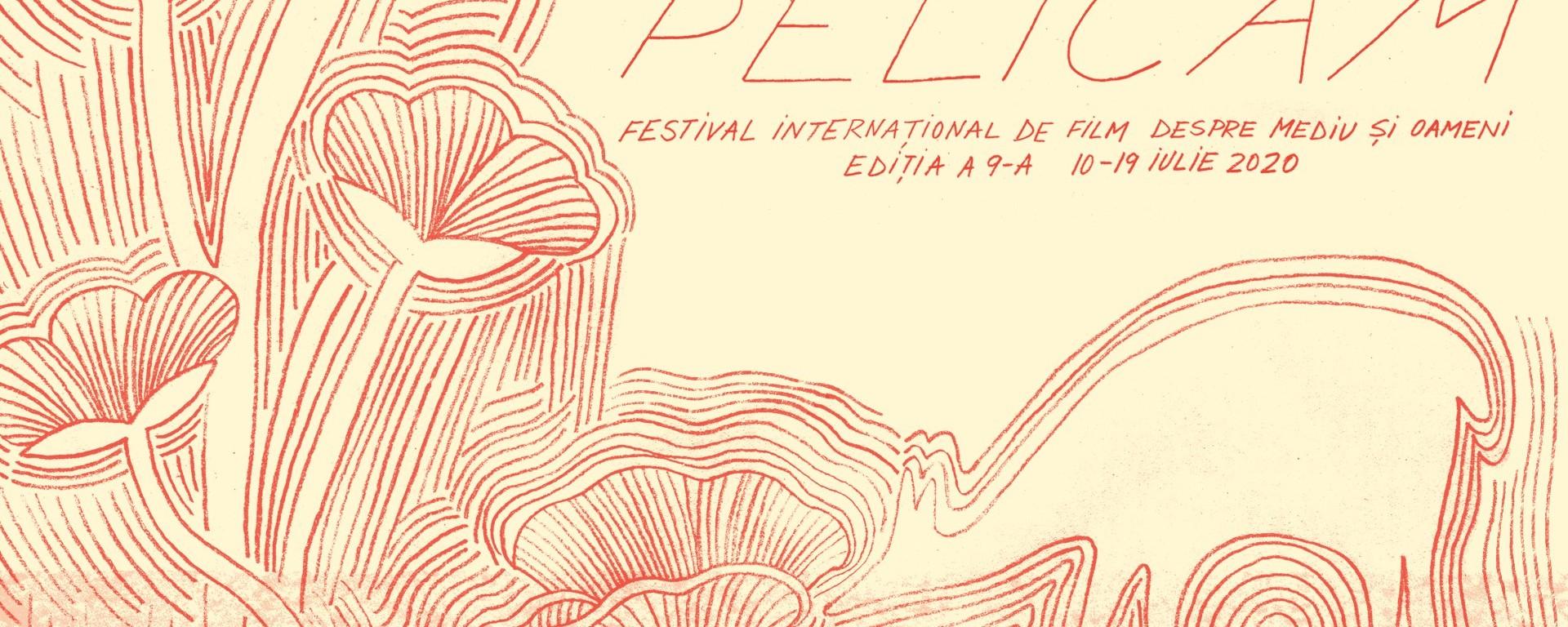 Pelicam Film Festival 2020 - online - 10 iulie