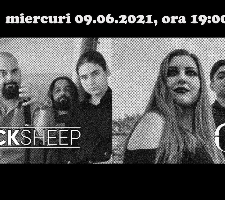 Blacksheep / MBP - live in Quantic 09.06.21